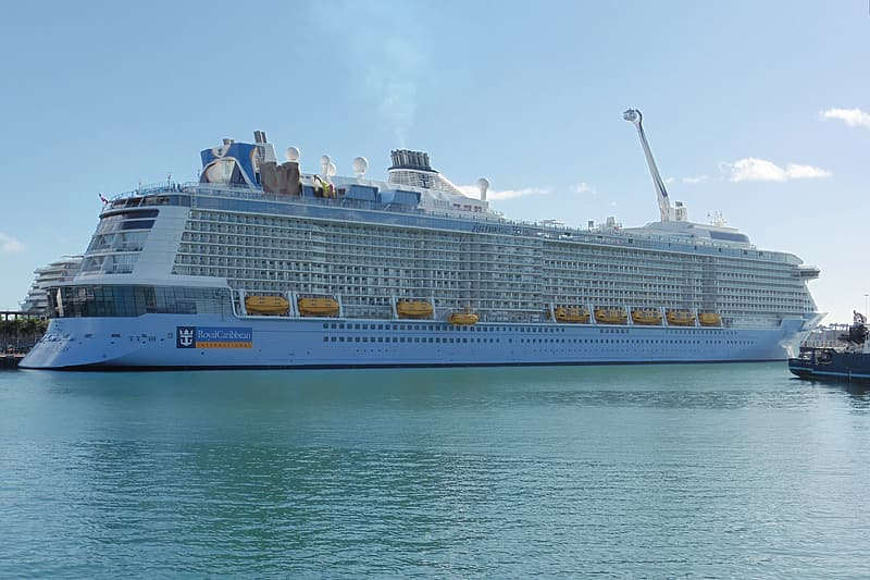 White and blue cruise ship on sea during daytime