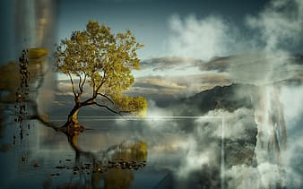 Tree on body of water painting