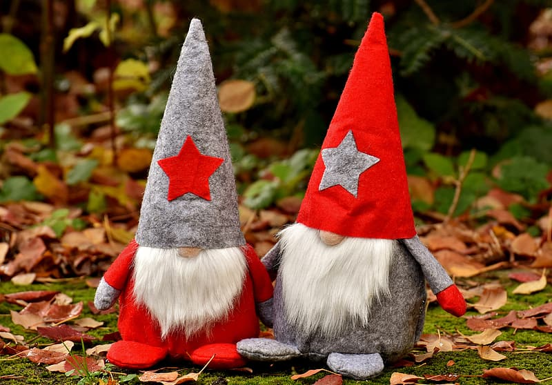 Two gnomes on garden