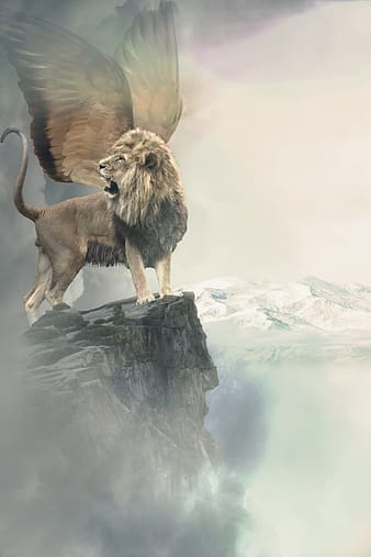 Lion and lion on rock formation during daytime