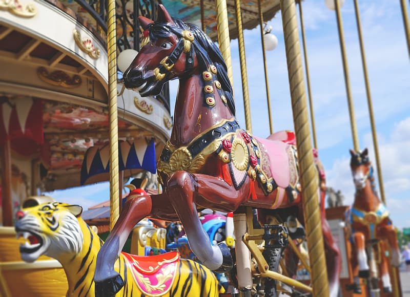 Carousel during day time