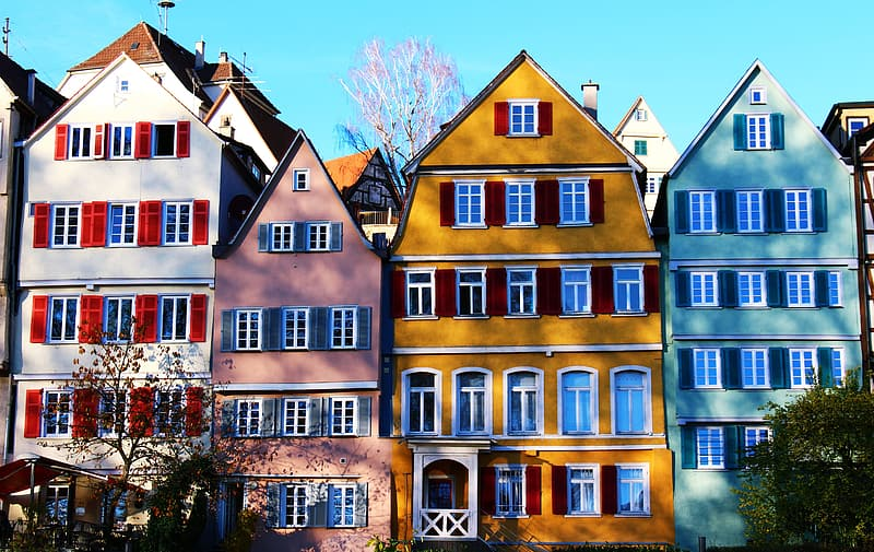 Assorted-color houses surrounded by trees during daytime