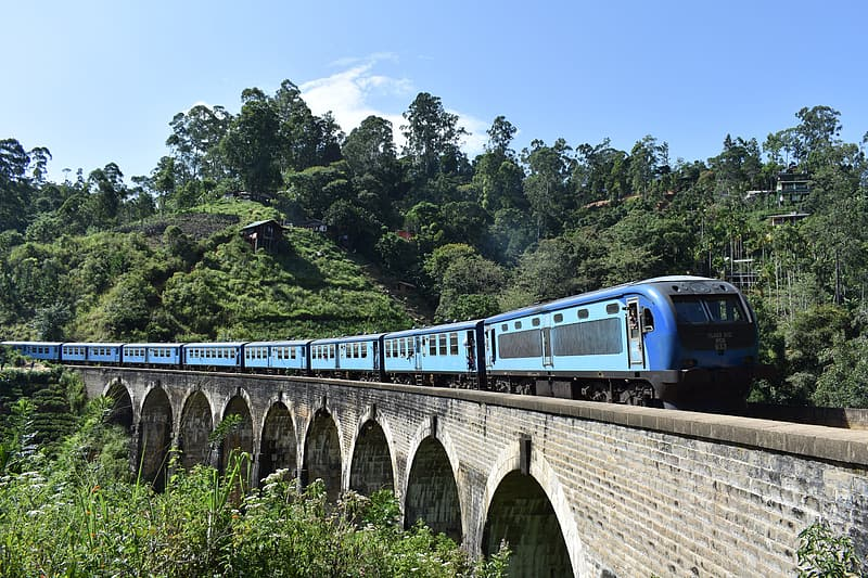 Blue and white train on rail bridge