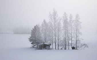 Gray wooden house covered with snow at daytime