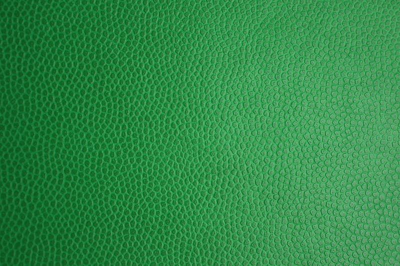 Untitled, green skin, leather texture, leather, texture, background, bright, leatherette, decorative, pattern