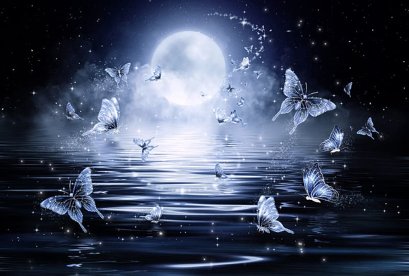 Butterflies above body of water during night time illustration