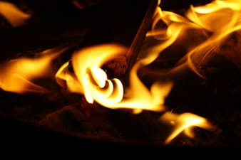 untitled, fire, wood fire, heat, hot, burn, flame, firewood, burning, heat - temperature