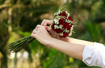 Person holding bouquet of red and white flowers