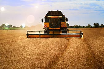 Yellow and black harvester harvesting crops on field