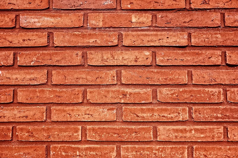 Person showing wall of bricks