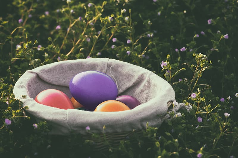 Blue pink and yellow egg on gray textile