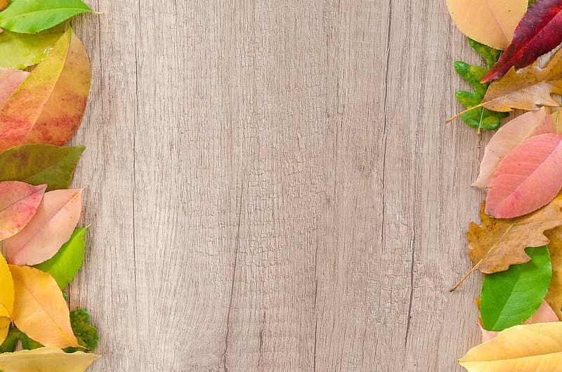 Beige wooden board with leaves