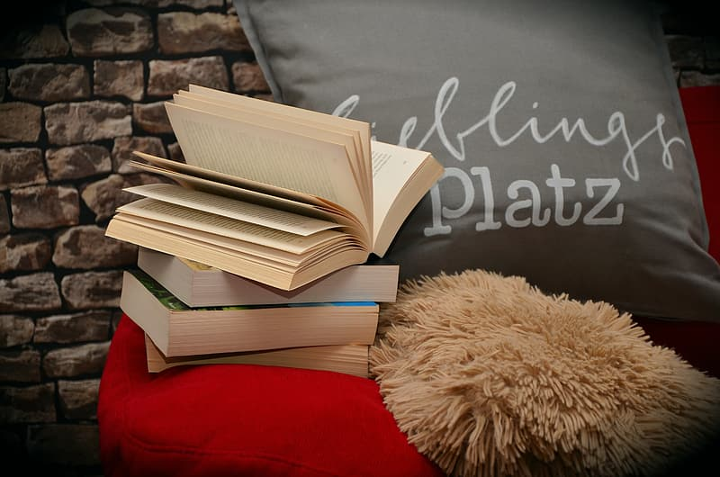 Four assorted books, gray throw pillow, and red sofa