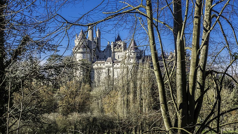White concrete castle surrounded by trees during daytime