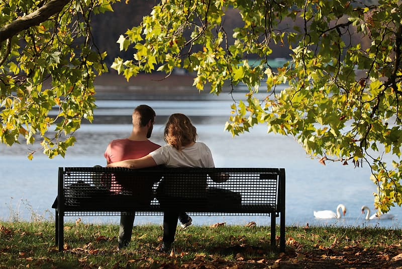 Woman sitting on bench under tree
