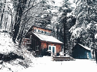 Brown wooden house covered with snow near trees during daytime