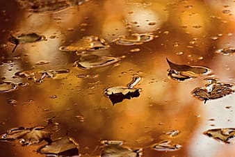 Water droplets on glass panel
