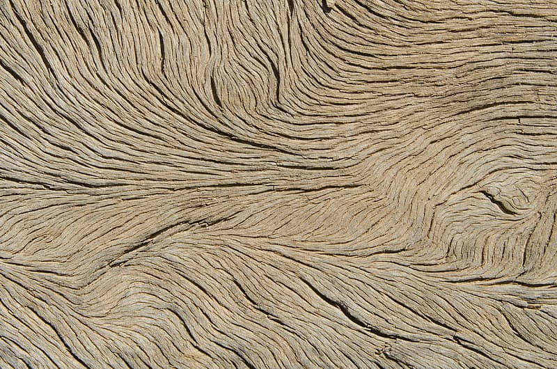 Brown wood surface wallpaper