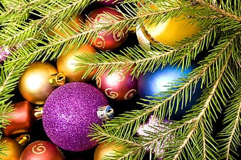 Purple and gold baubles on green pine tree