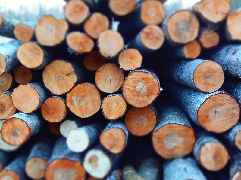 Brown and gray firewoods