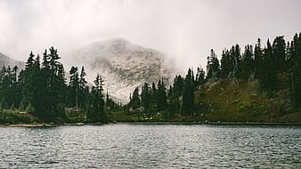 Body of water near mountain with trees