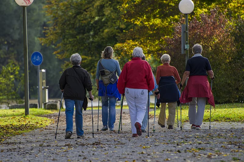 Adult women with walking canes walking along street during daytime