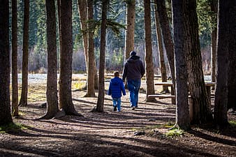 Man and boy near brown tree during daytime