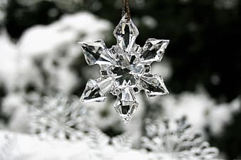 Closeup photography of snowflakes