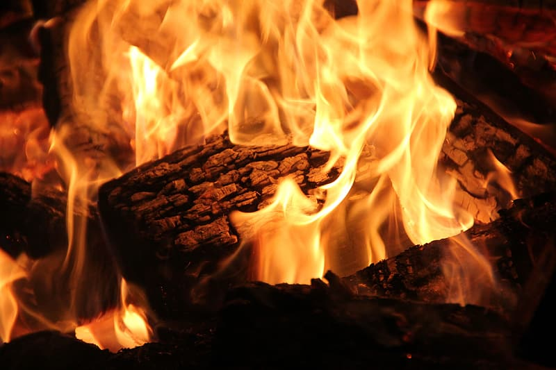 Close-up photography of brown woods with fire