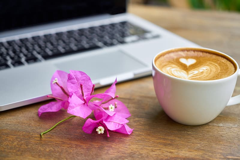 Pink bougainvillea flower beside cup of coffee and silver laptop computer on brown wooden table