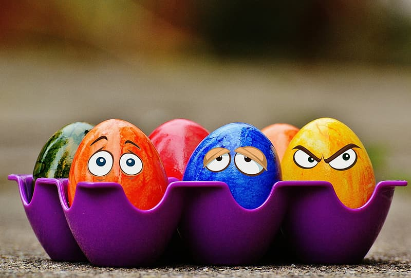 Six assorted-color eggs in purple egg tray