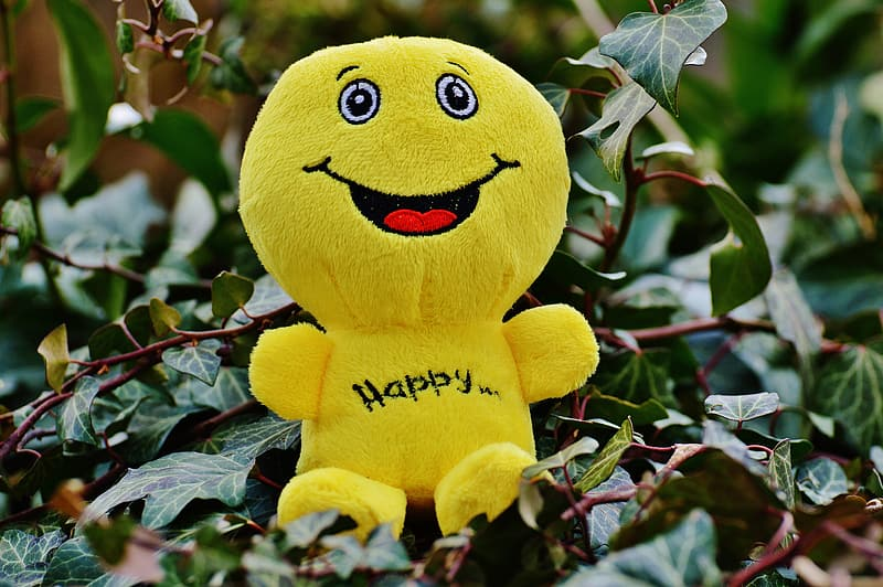 Yellow smiley plush toy on green leaves