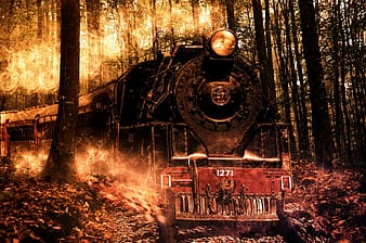 Black and red train beside green leafed trees