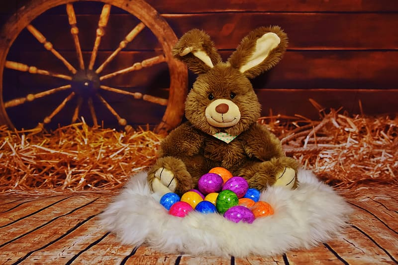Easter Bunny plush toy set placed on brown wooden floor