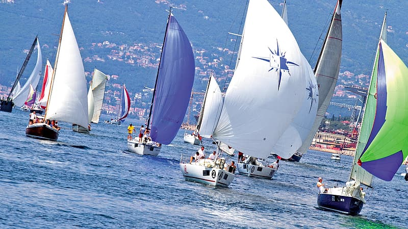 Sail boats on body of water during daytime