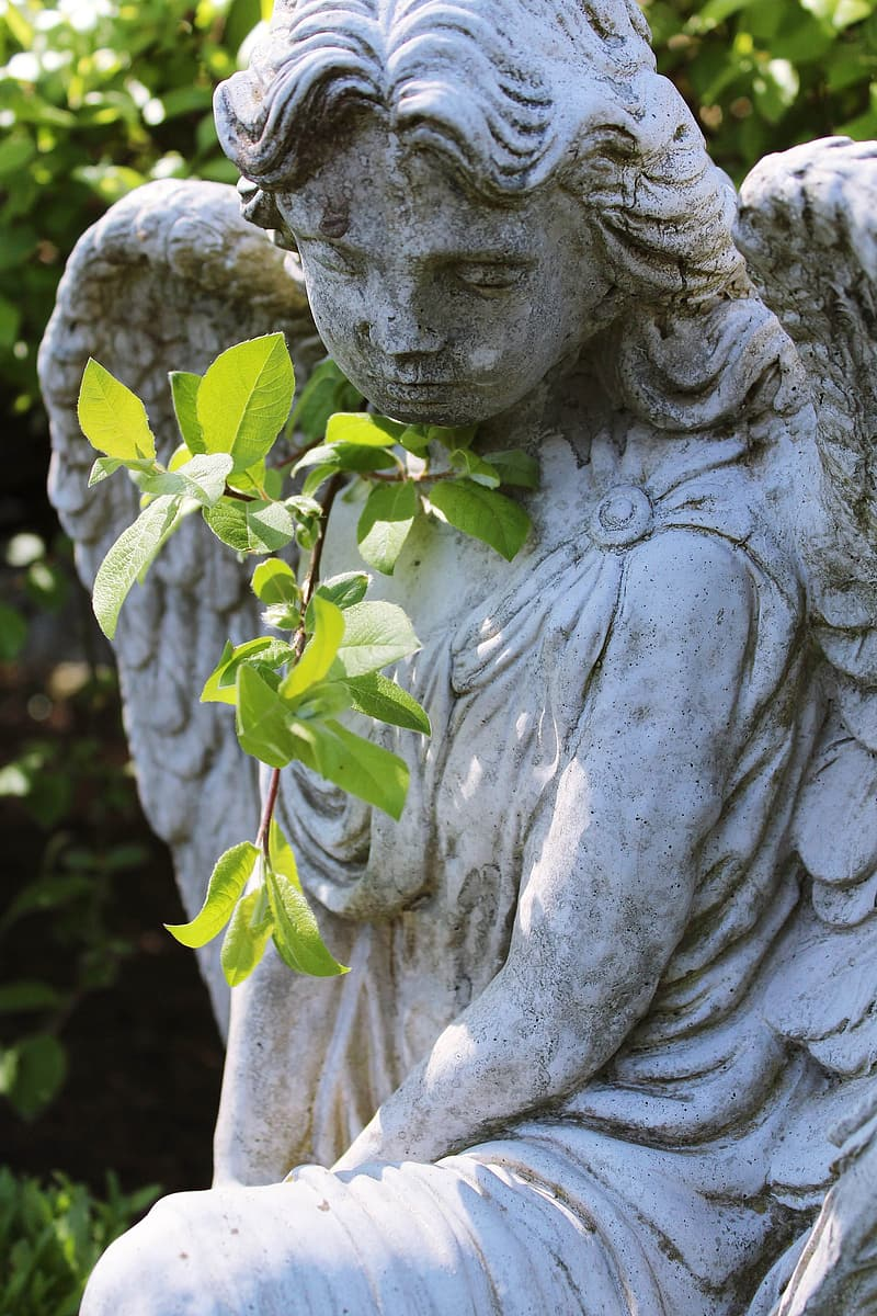 Angel statue with white flower