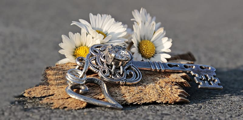 Silver-colored skeleton key accessory and white flowers