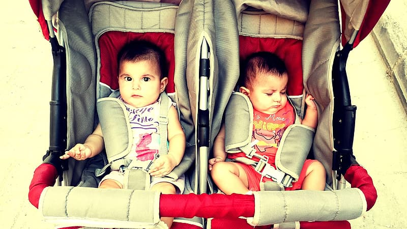 2 baby lying on red and gray stroller