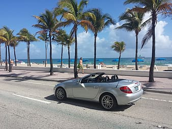 Silver convertible on street near seashore with tall trees and sun loungers