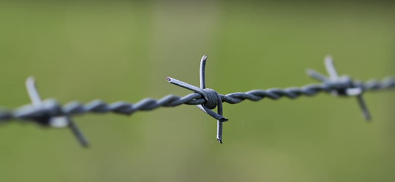 Selective focus of gray burb wire