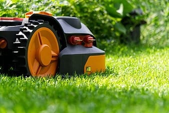 Black and orange toy car on green grass