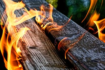 Brown wood log with fire