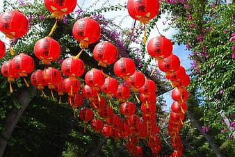 Red traditional hanging decorations during daytime