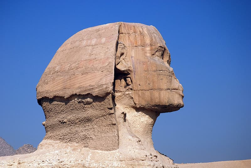 Brown sphinx during daytime