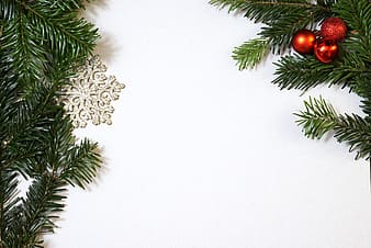 Green Christmas trees and red baubles
