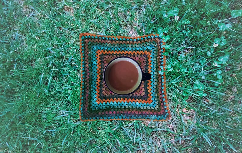Black and brown round rug on green grass
