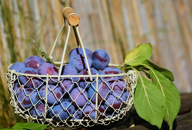 Bunch of grapes on white basket