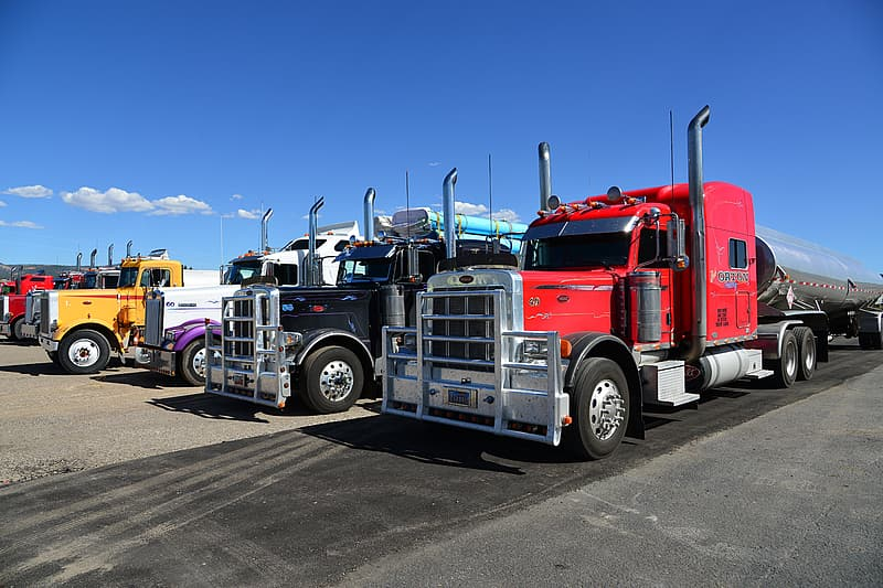 Four assorted-color freight trucks under blue sky