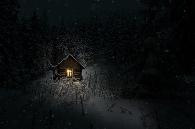 Photo of brown wooden house near trees during winter