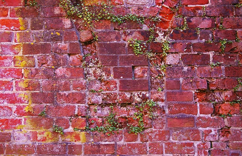 Photo of red brick wall
